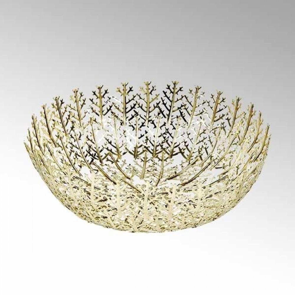 Lambert Schale Cristallo, Gold